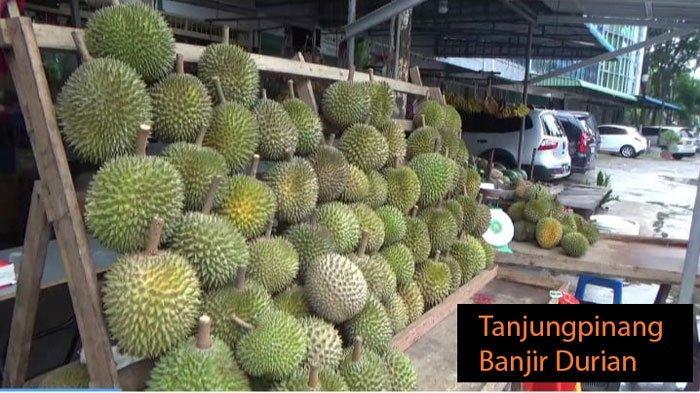 Harga Durian di Tanjungpinang 3 Buah Rp 100 Ribu
