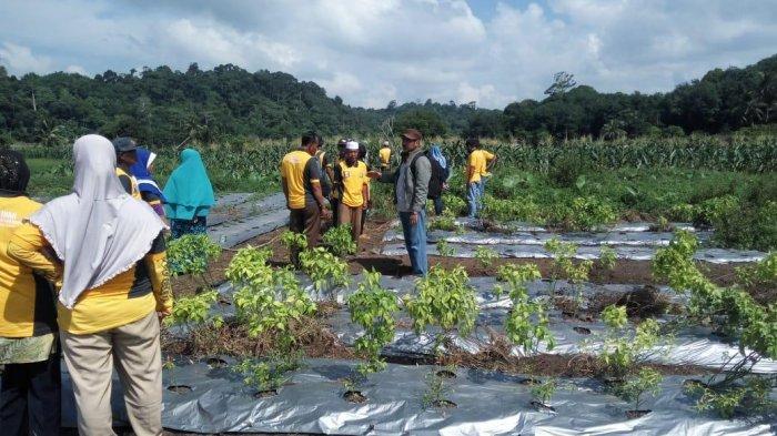 Ada Rencana pembuatan Biogas di Anambas, Masyarakat Minta Segera di Realisasikan