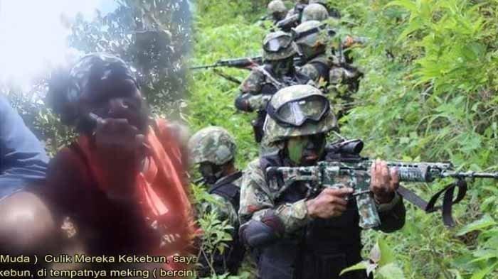 KKB Papua Tebar Ancaman Maut di Tengah Hutan, Mau Culik Para Gadis Muda, TNI Tak Tinggal Diam!
