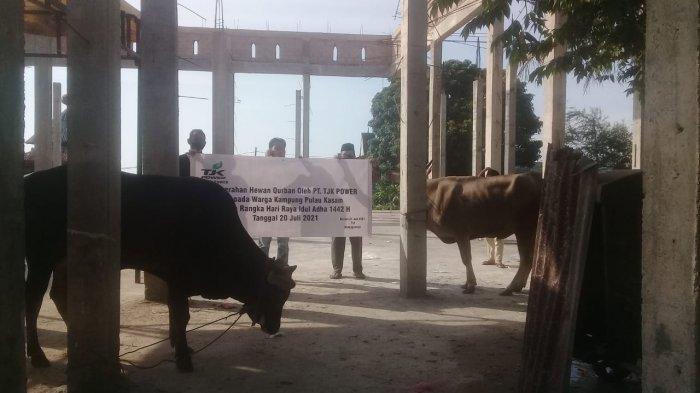 PT TJK Power salurkan 6 ekor sapi kepada warga di Momen Idul Adha 1442H