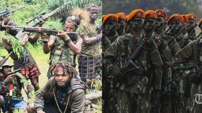 Anggota KKB Papua Lari Terbirit-birit Usai Dikejar TNI Polri, Lari ke Hutan dan tak Balik-balik