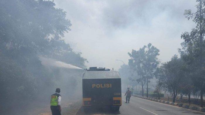 Kebakaran Hutan Dekat Bandara Hang Nadim Batam Tak Ganggu Aktivitas Penerbangan
