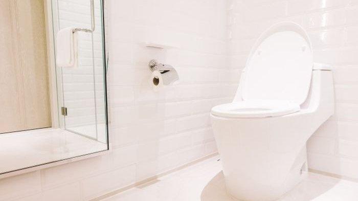 Cara Merawat Toilet Agar Bersih Kinclong, Ketahui Bahan Kimia yang Dapat Digunakan