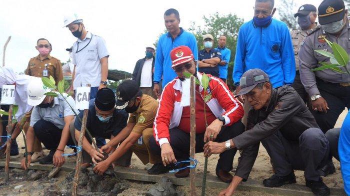 1.000 Bibit Mangrove Bantuan PT Timah Ditanam di Pantai Remis Karimun, Ini Harapan Wakil Bupati