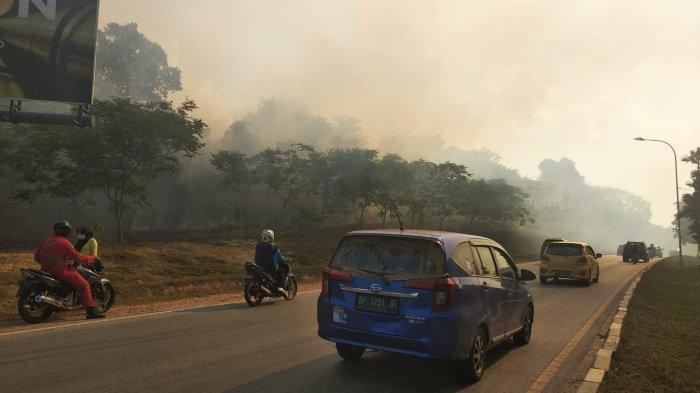 Asap Ganggu Jarak Pandang, Petugas Berjibaku Padamkan Kebakaran Hutan di Batam Centre