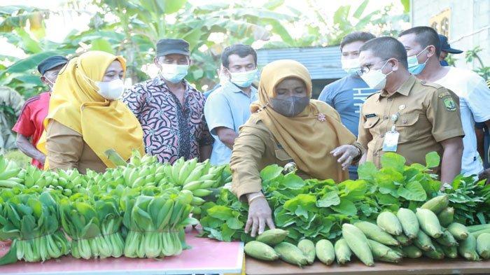 Walikota Rahma Serahkan Bantuan Pertanian, Upaya Pemulihan Ekonomi Akibat Pandemi Covid-19