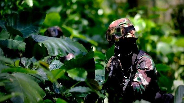 Kopassus Temukan Peti Mati Isi Uang di Hutan, Jenderal Mendadak Teriak: Tinggalkan atau Kau Mati!