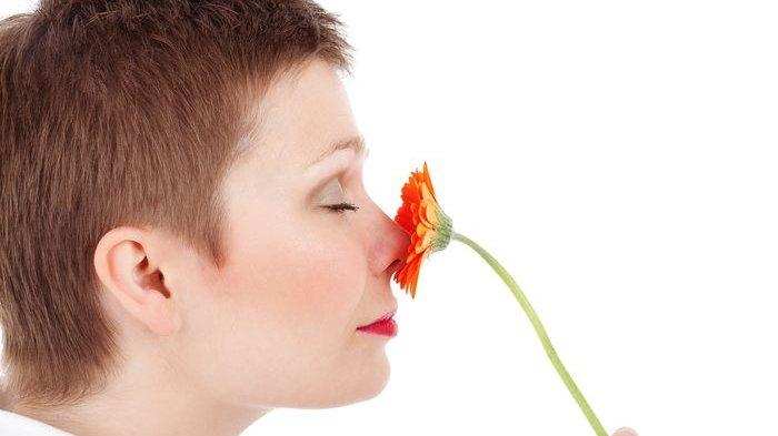 Arti Kedutan di Hidung Kanan Menurut Primbon, Mitosnya Kamu Bakal Jatuh Sakit