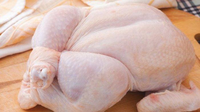 Bahaya Makan Daging Ayam yang Belum Matang