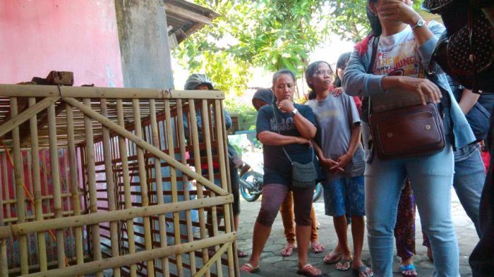 Warga beramai-ramai menyaksikan seekor babi yang ditangkap warga yang diduga babi ngepet atau babi jadi-jadian.