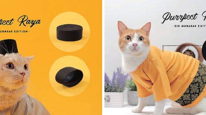 Toko Ini Sediakan Baju Hari Raya Khusus untuk Kucing Kesayangan, Tertarik?