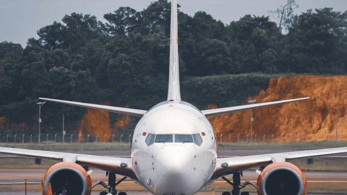 Mulai 1 Maret Pemerintah Beri Diskon 50 Persen Tiket Pesawat Ke 10 Rute Penerbangan Batam Termasuk Tribun Batam