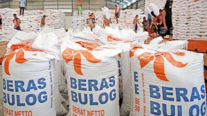 Pekerja mengangkut beras impor dari Thailand di gudang Bulog Divre Jatim, Buduran, Sidoarjo, Jawa Timur, Senin (26/2/2018)