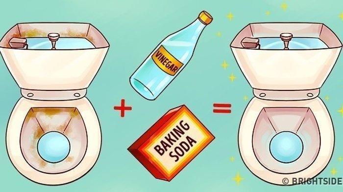 Cara Bersihkan Keramik Toilet , Cukup Siapkan 2 Bahan Dapur Berikut Ini
