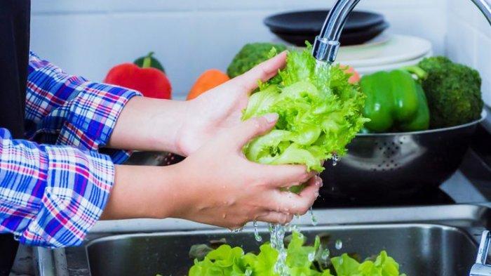 Tips dan Cara Menyimpan Sayuran Agar Awet dan Segar hingga Berbulan-bulan
