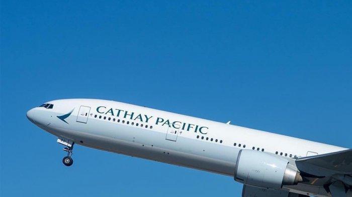 2 Eksekutif Cathay Pasific Mundur, Akibat Aksi Unjuk Rasa di Hong Kong?