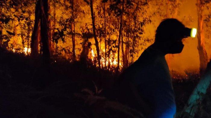 Awal Tahun 2021, Pemko Tanjungpinang Catat 46 Kasus Kebakaran, 39 Diantaranya Karhutla