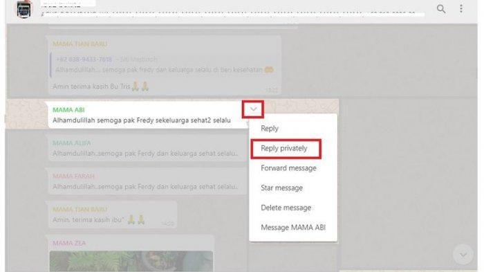 Cara menggunakan fitur Reply Privately untuk membalas pesan secara rahasia di Grup WhatsApp via desktop