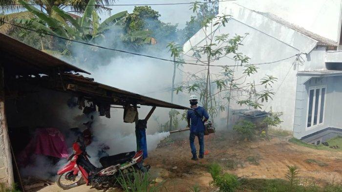 Kelurahan Kota Baru Bintan Waspada Demam Berdarah, Fogging Hingga Bagikan Bubuk Abate