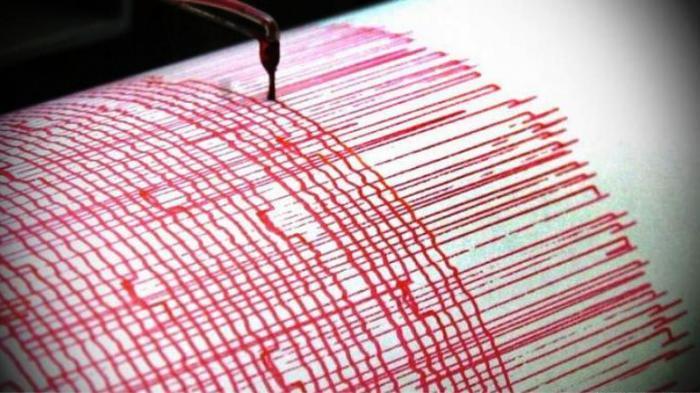 Gempa 5,1 SR Guncang Mentawai 28 Februari 2019 Jam 21.18 WIB, Terasa hingga Bukittinggi Sumbar