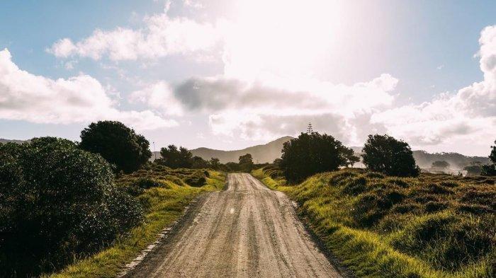 Deretan 15 Pulau Terbaik di Selandia Baru, Menarik Dijelajahi Wisatawan Asing
