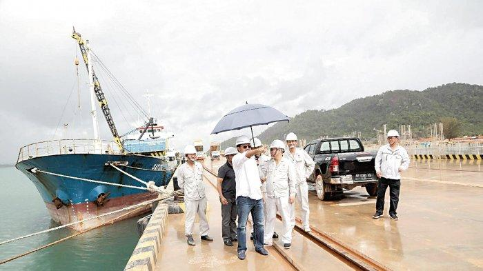 Gubernur Tinjau Proyek Strategis yang Disetujui Presiden Joko Widodo. Ini Progres Bidikan Investor