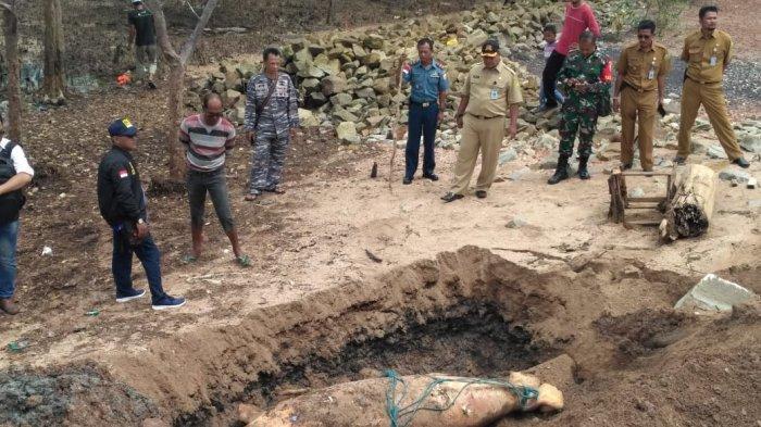 Ikan Duyung Terdampar Mati di Karimun Akhirnya Dikuburkan, Kuburan Digali Pakai Alat Berat