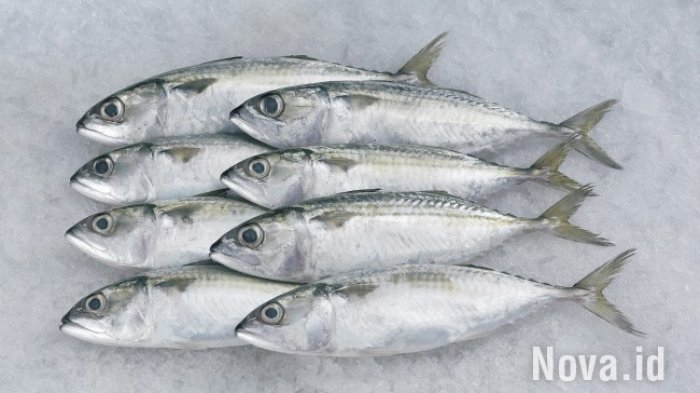 Tips Memilih Ikan Segar untuk Dibakar di Malam Tahun Baru 2021, Perhatikan Bau dan Matanya