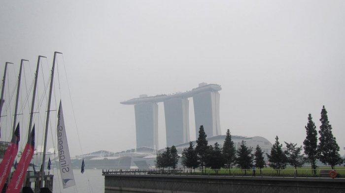 Riau dan Kalimantan Kabut Asap, BNPB: Tak Sampai Singapura dan Semenanjung Malaysia