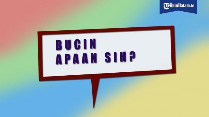 Bahasa Gaul 2020, Sudah Tahu Arti Kata Santuy, Sekut, Gercep, Gabut, Bucin atau Komuk? Ini Artinya