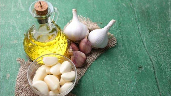 Benefits of Onions to Prevent Breast Cancer, Study Conducted in Puerto Rico