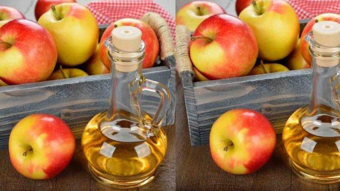 Ini Manfaat Cuka Apel Bagi Tubuh bila Dikonsumsi Rutin Setiap Hari