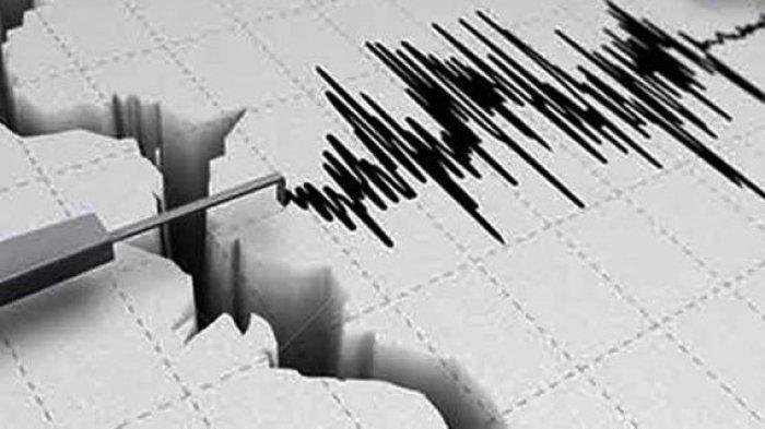 BMKG Waspadai Potensi Tsunami Akibat Gempa di Maluku Tengah, Minta Warga ke Tempat Tinggi