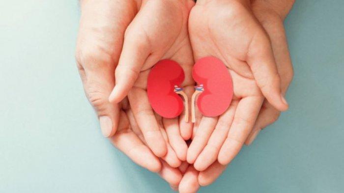 Cara Cegah Gagal Ginjal, Lakukan 5 Kebiasaan Ini agar Tak Cuci Darah Seumur Hidup!