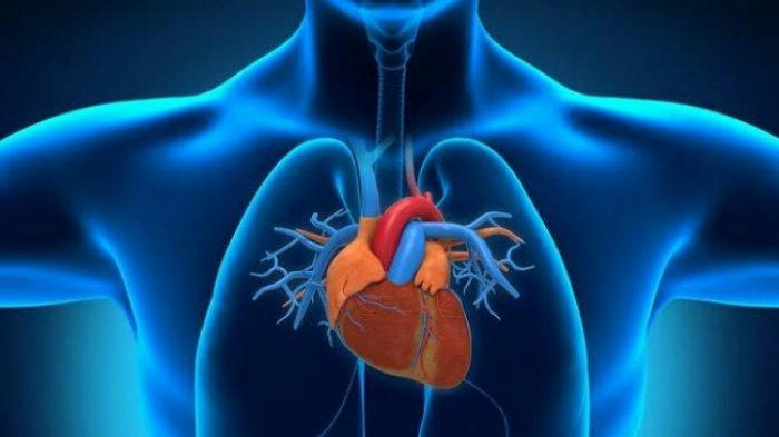 SIMAK Golongan Darah yang Rentan Terjangkit Penyakit Jantung