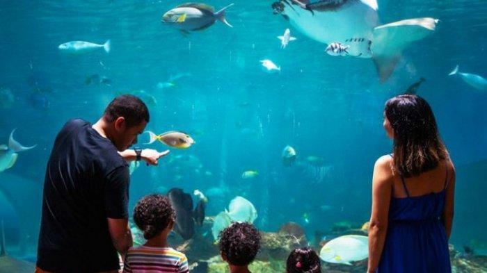 8 Destinasi Wisata di Sekitar Lokasi SEA Games 2019, Kunjungi Manila Ocean Park