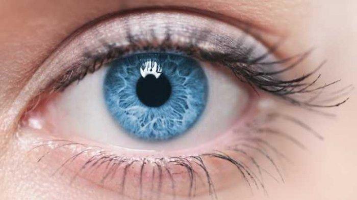 Teknik Jahit Bulu Mata untuk Mata Terlihat Lebih Belo bagi Kamu Pemilik Mata Sipit, Berminat?