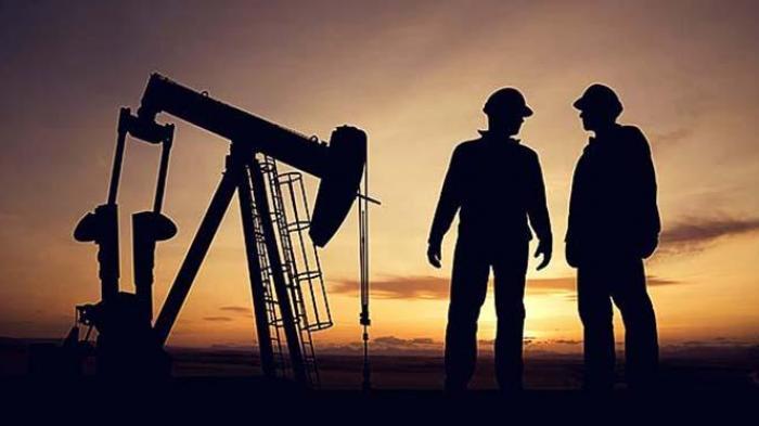 Putut Prabantoro: Kilang LNG Harus Dibangun di Darat