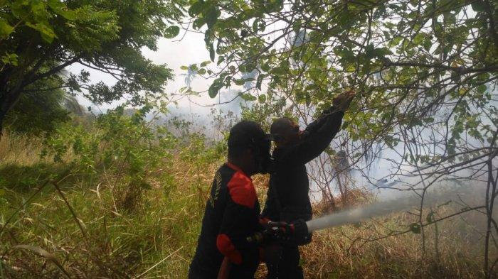 Belum Lagi Selesai Padamkan Api di Lahan Gambut, Kebakaran Kembali Terjadi di Teluk Bakau Bintan