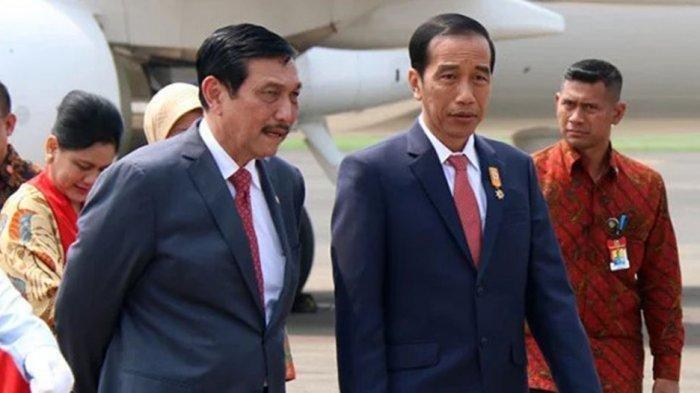 Bukan Susi Pudjiastuti, Jokowi Tunjuk Luhut jadi Menteri KKP Ad Interim Gantikan Edhy Prabowo - Tribun Batam