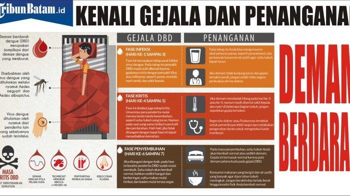 Kasus DBD Melonjak di Sejumlah Wilayah Indonesia, Bagaimana dengan Batam? Ini Penjelasan Kadinkes
