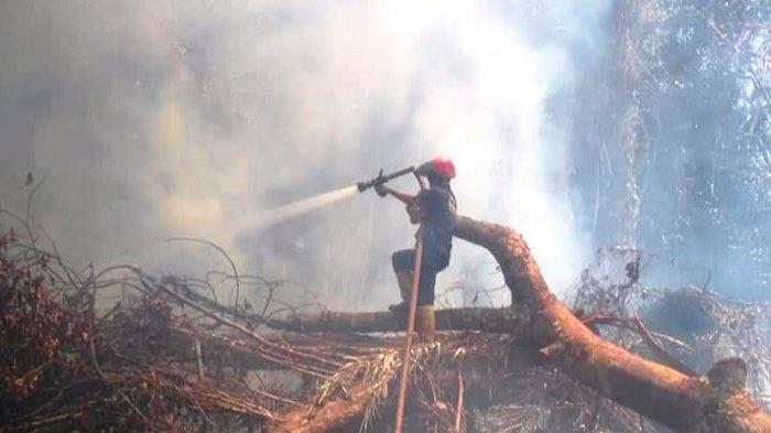 KARHUTLA di Lingga, Api Bakar Lahan di Desa Persing Singkep Pesisir