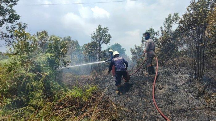 Karhutla di Pulau Bintan LAGI, Perusahaan Sampai Kewalahan Padamkan Api