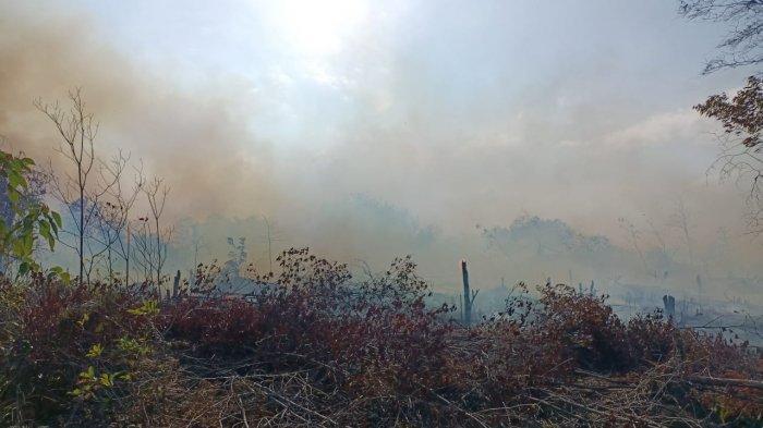 Kebakaran hutan di Kawasan Keselamatan Operasi Penerbangan (KKOP) Bandara Hang Nadim Batam, Selasa (9/3/2021).