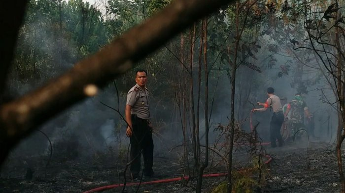 Bintan Regional Police Station Determines 8 Persons Suspected of Forest And Land Burning