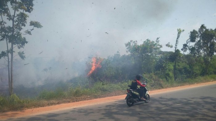 Api Lalap Lahan Kosong di Simoang Base Camp, Warga Keluhkan Sesak Napas!