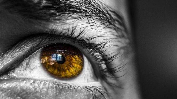 Arti Kedutan Mata Kiri Atas, Benarkah Bukan Pertanda Buruk? Ini kata Primbon Jawa