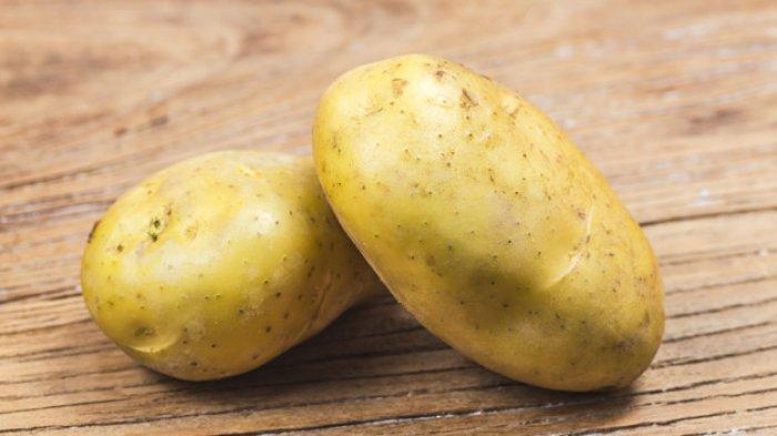 Ilustrasi kentang