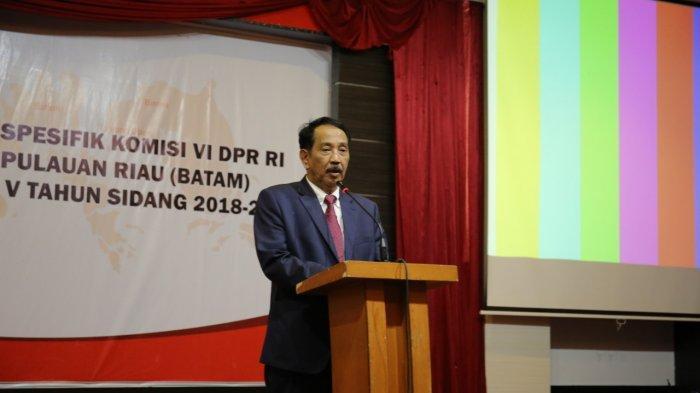 Presiden Jokowi Teken PP Terkait Ex Officio, Kepala BP Batam Siap-Siap Balik Kandang
