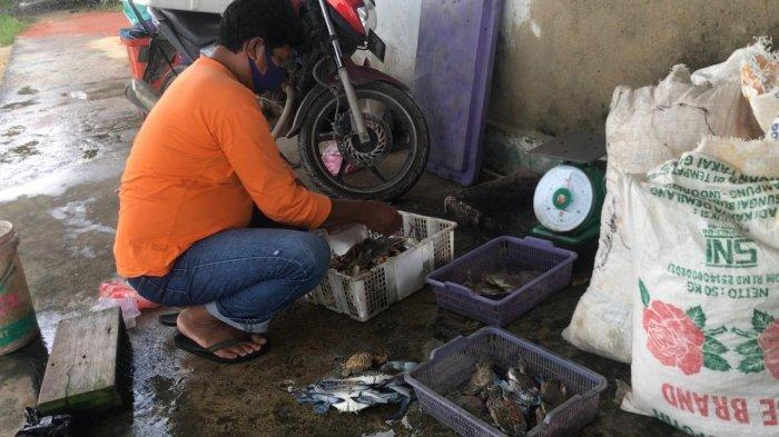 Usaha daging rajungan milik Ridwan di Kawal, Kecamatan Gunung Kijang, Kabupaten Bintan, Provinsi Kepri. Foto diambil belum lama ini.